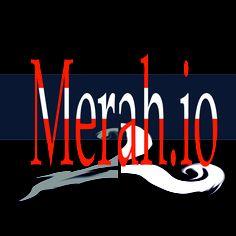 logo .author vesna S. disic
