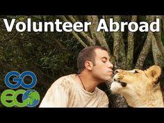 Volunteer in United States | Programs, Reviews, & Funding