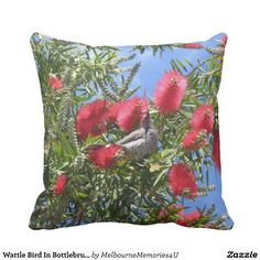 Wattle Bird In Bottlebrush Throw Pillow Wattlebirds (Anthochaera) are members of the honeyeater family, and native to Australia. The Red Wattlebird is a large, noisy honeyeater. The Red Wattlebird occurs in forests, woodlands and gardens, where it aggressively protects food-bearing plants from other honeyeater species.