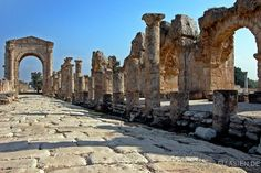Alexander the Great road in Tyre