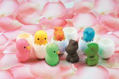Chicken & Dinosaur Egg Erasers, New 2012, a Set of 6 Pcs, Color May Vary. Iwako by Iwako. $5.25. Iwako Japanese Eraser.. Iwako Japanese Eraser. a Set of 6 Pcs, 3 chicken eggs & 3 dinosaur eggs. Color May Vary.