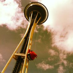 Angry Birds take over the Seattle Space Needle. Photo by @MorganPalmer