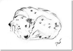 Lucy Dawson - Book Plate From Dogs Rough and Smooth by Lucy Dawson -  Lucy Dawson Dalmatian Blot Peeking Painting