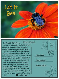 Mother Nature:  Let It Bee