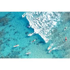 Gray Malin Surfing Waikiki - 24x36 / White