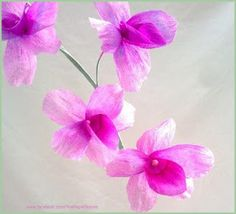 Crepe paper Orchid