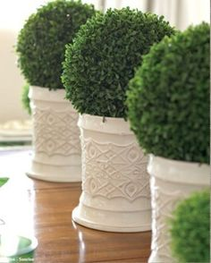 Topiary table centerpieces #topiary