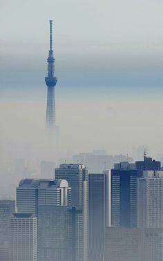 かすみに沈む新宿の高層ビル群(手間)や東京スカイツリー=2015年11月24日午前9時26分、本社ヘリから猪飼健史撮影