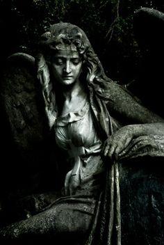 OHNE TITELFrankfurt HauptfriedhofJuli 2010---