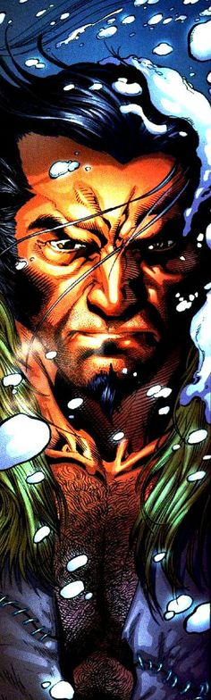 Ultimate Wolverine by Adam Kubert