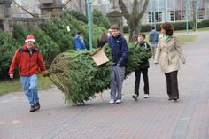 The annual Delbarton Christmas Tree sale took place on a mild Sunday, December 2, 2012. Faculty, students and parents all helped out.
