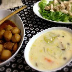 シチュー  里芋の煮物  ツナサラダ - 1件のもぐもぐ - クリームシチュー by maako1006