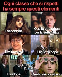 E voi chi siete? Harry Potter Wattpad, Harry Potter Tumblr, Harry Potter Love, Harry Potter Memes, Harry Potter World, Verona, Hermione Granger, Hogwarts, Funny Memes
