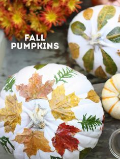 { DIY: pumpkin decorating for fall } | The Sweet Escape
