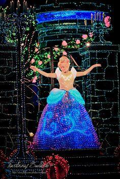 Electrical Lights  Parade Tokyo Disneyland  Princess Cinderella