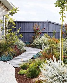 An easy-care coastal garden in Torquay with colourful plants Sorting out a multi-level garden with beds sporting vibrant, low-growing plants has made this coastal patch in Torquay a standout.