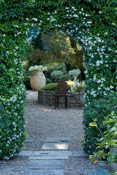 Beautiful star jasmine covered archway entrance to garden