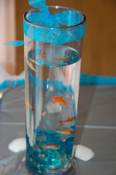 Glass Cylinders with Fish that were placed on Main Table and Some of the Guest Tables