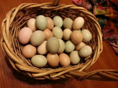 From our Easter Egger chickens
