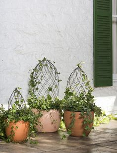Jardin Pot Trellis is an hourglass-shaped, steel planter trellis that offers sophisticated support. Garden Trellis, Garden Pots, Plant Trellis, Moon Garden, Patio Tiles, Pot Jardin, Topiary Trees, Topiary Plants, Topiary Garden