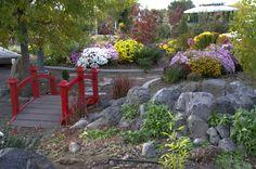 Learn more about our Master Gardener Volunteer Program.