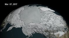 On March 7, Arctic sea ice hit a record low wintertime maximum extent. At 5.57 million square miles, it is the lowest maximum extent in the satellite record, and 455,600 square miles below the 1981 to 2010 average maximum extent.(L. Perkins/NASA Goddard's Scientific Visualization... http://usa.swengen.com/the-arctic-just-set-a-grim-record-for-low-levels-of-sea-ice/