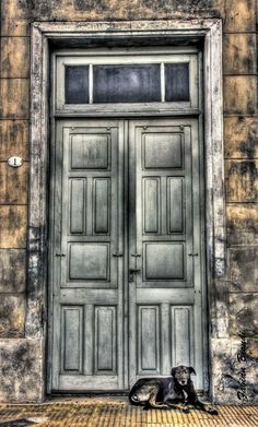 Dreams Doors & Opportunity (Tara Turner)   Doors and Windows   Pinterest   Doors ... pezcame.com