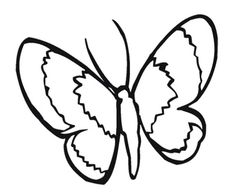 Animals Simple Butterfly Coloring Pages