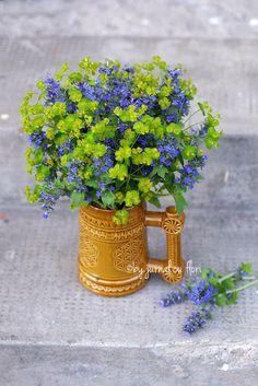 Jurnal cu flori: viata in 2 culori - despre viata la tara, flori salbatice din Transilvania in cana