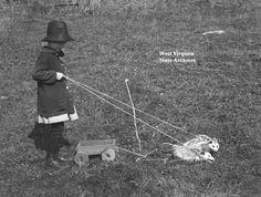 Dorothy Brooks with opossums pulling her toy wagon, Upshur County, WV - 1916.