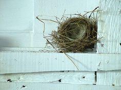 Home by Églantine, via Flickr