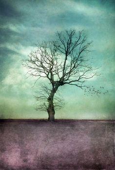 ATMOSPHERIC TREE I Art Print