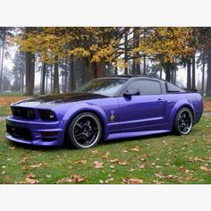 Oh yea baby!  This is for me!!  It's purple, it's a Mustang and it's pretty.  Love to take this for a Sunday drive.