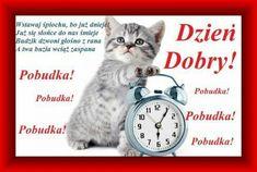 Alarm Clock, Humor, Magick, Good Morning, Projection Alarm Clock, Humour, Alarm Clocks, Funny Photos, Funny Humor