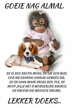 Lekker Dag, Afrikaanse Quotes, Good Night Blessings, Good Night Greetings, Goeie Nag, Goeie More, Morning Prayers, Special Quotes, Prayer Quotes