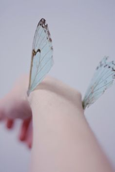 Wings on my arms ぶらぶら Life Is Strange, Writing Inspiration, Faeries, Ethereal, Ravenclaw, Fairy Tales, Pictures, Photos, Pretty