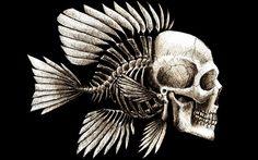 рыба рисунок графика - Поиск в Google