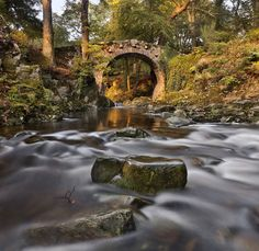 Foleys Bridge Foleys Bridge in Tollymore Forest Park in Co Down, N Ireland. by Gary McParland on 500px
