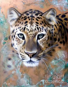 Copper Painting - Copper Stealth - Leopard by Sandi Baker Big Cats Art, Cat Art, Animal Sketches, Animal Drawings, Pencil Drawings Of Nature, Realistic Drawings, Leopard Tattoos, Image 3d, Colorful Animals