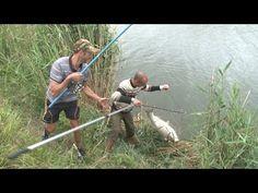 """Ловля толстолобика """"на пружину"""". О рыбалке всерьез. Выпуск 316 HD - YouTube"""