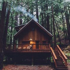 happy christmas ✨ wishing you all the serenity & joy of a secluded forest cabin with your loved ones xx   shop red santal at abelodor.com   #redsantal #naturalperfume #nicheperfume #essentialoils #fragrance #perfume #organic #greenbeauty #blackpepper #pepper #sandalwood #ginger #bergamot #forest #cabin #red #warmwood