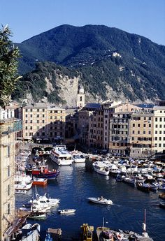 Camogli, Italian Riviera  Explore the World with Travel Nerd Nici, one Country at a Time. http://TravelNerdNici.com