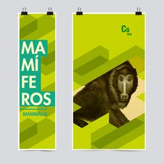 Natural Science Museum of Bs As (updated) by Esteban Simone, via Behance Typography Letters, Typography Design, Lettering, Natural Science Museum, Museum Identity, Science Week, Bs As, Visual Identity, Corporate Identity