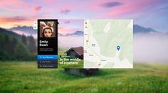 Web app interface UI UX