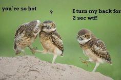 LOL! Love this...