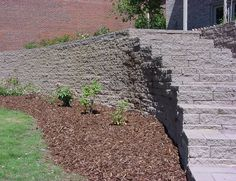 Stairs in wall Retaining Walls, Stairs, Patio, Plants, Ladders, Yard, Terrace, Stairway, Flora