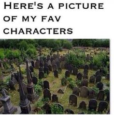Dumbledore, Dobby, Sirius Black, Lupin (Harry Potter) Rue (Hunger Games) Tris, Uriah (Divergent) The list goes on … oh my heart hurts. My Sun And Stars, The Fault In Our Stars, Fandoms Unite, Fantine Les Miserables, Les Miserables Funny, Les Miserables Quotes, Aiden Teen Wolf, Han Star Wars, Rue Hunger Games