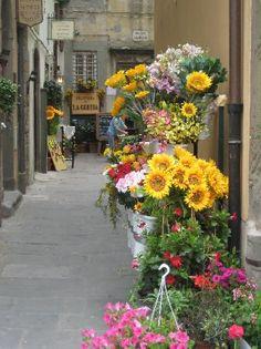 Tuscany Photos - Featured Images of Tuscany, Italy - TripAdvisor