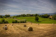 We have already wrote some insights about Tuscany and this time we would like to introduce you to a special area: Mugello.