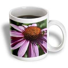 ($14.99) Exploration and Discovery- Pink Echinacea Flower- Floral Photography - 15oz Mug From 3dRose LLC